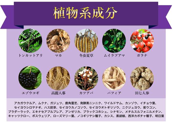 植物・酵素系成分