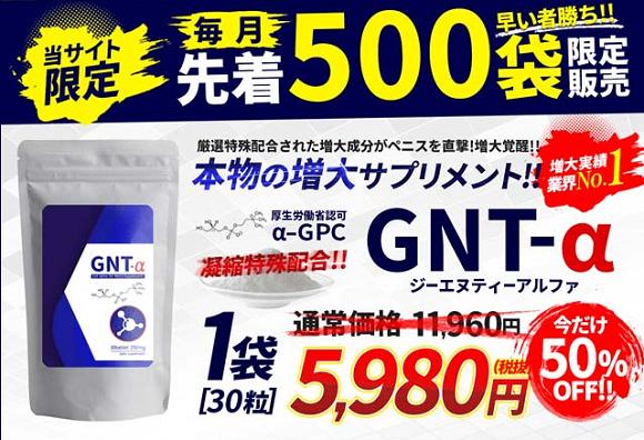 GNT-αの料金