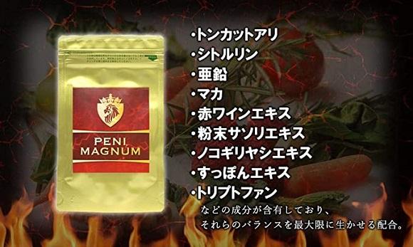 PENIMAGNUM(ペニマグナム)